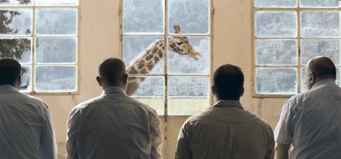 Giraffada. Una storia a collo lungo